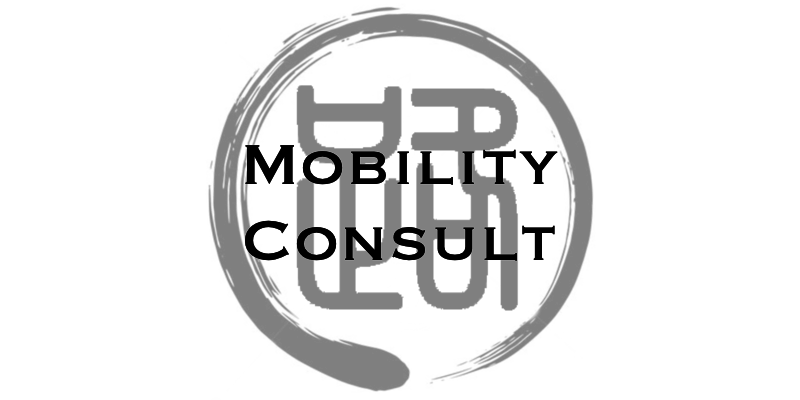 mobility consult